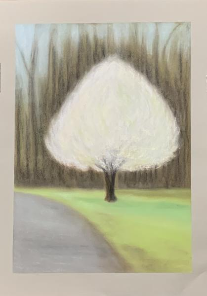 One White Tree Mississippi River Road, 2020, pastel on paper, 24x18