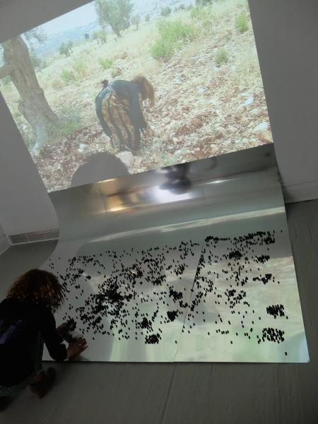 Artists installing- rubber bullets and olive trees