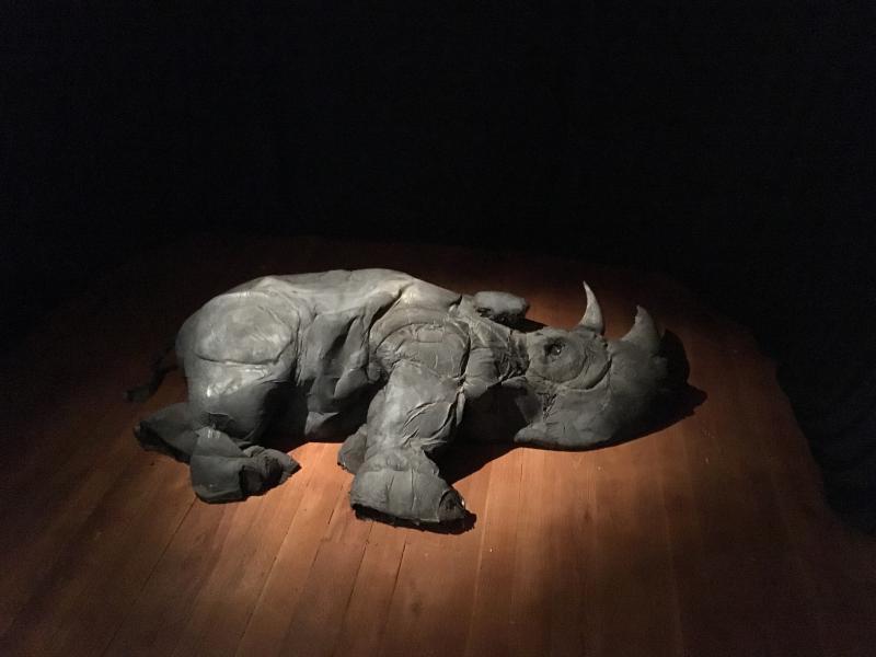 installation, sculpture, sound, western black rhinoceros, anthropocene