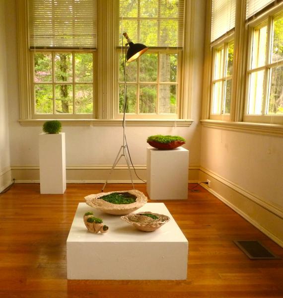 installation, sculpture, water, light, sustainalbility