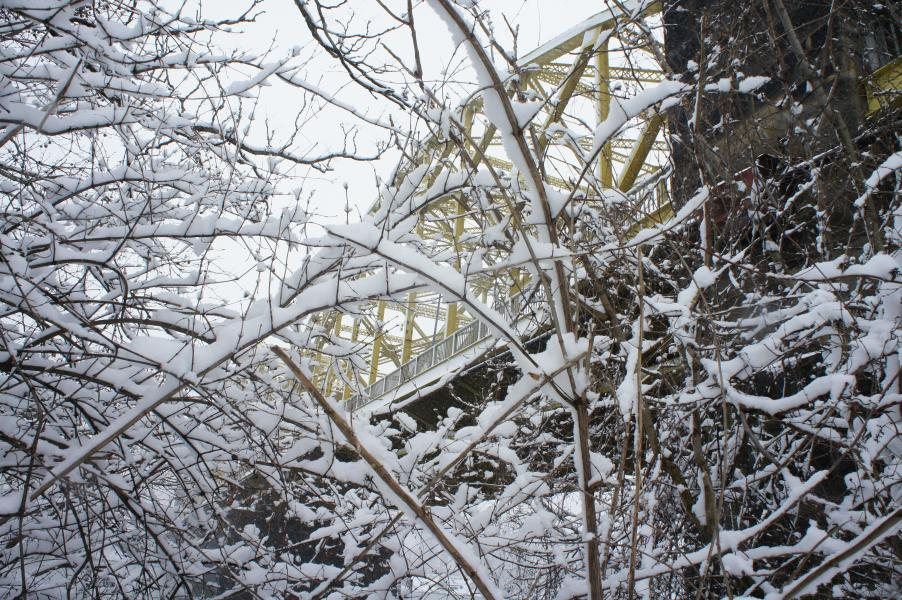 A photograph of snowy trees and a bridge, taken by Jennifer N. Shannon