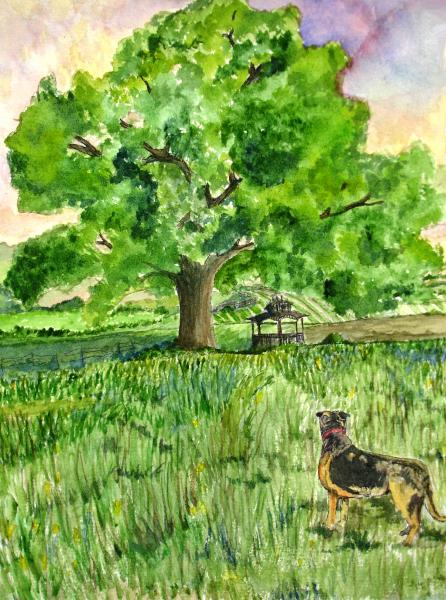 Watercolor painting of a dog  and gazebo in a pasture