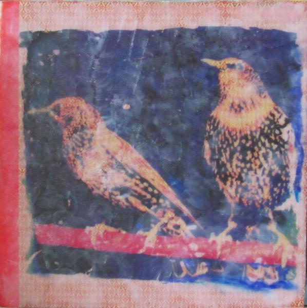 encaustic, Starlings, 12 x 12