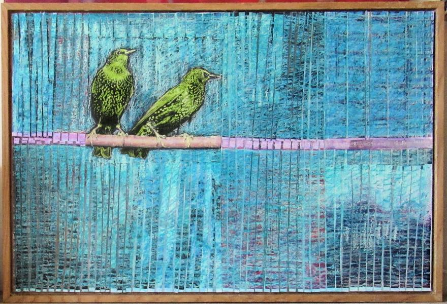 collage, starlings