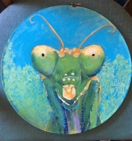 painting, round, insect, praying mantis