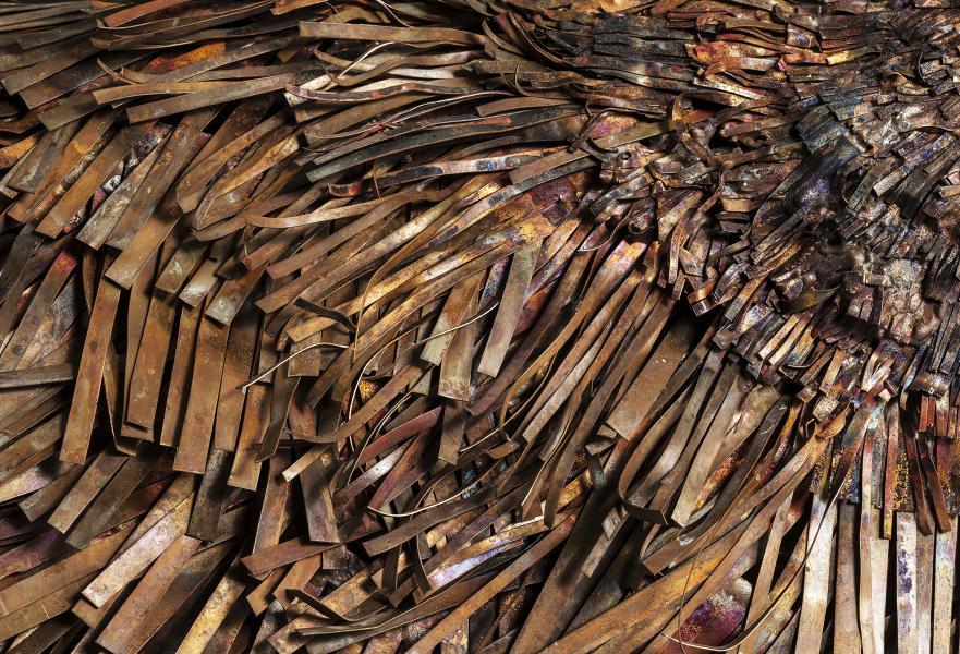 Raven-close-up. ideogram; matted undergrowth/leaf litter copper