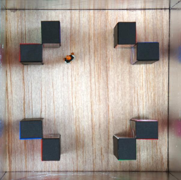 Four Corners installation model
