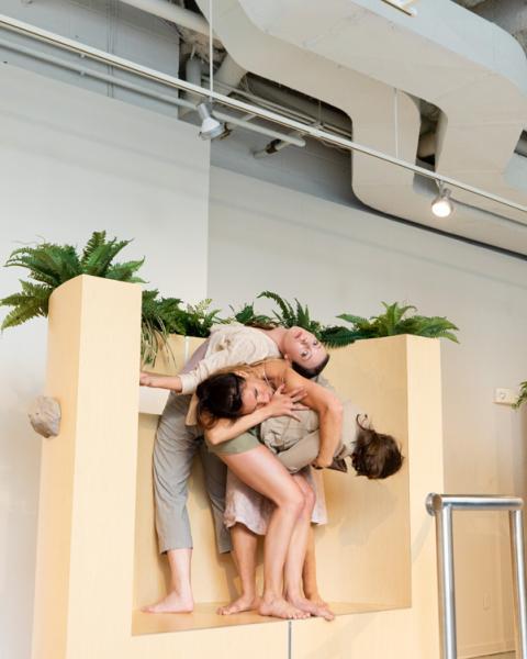sculpture, installation, dance