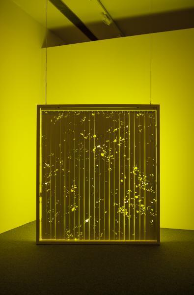 Light art, sculpture