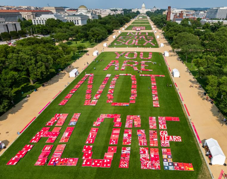 The Monument Quilt blanketing then National Mall with 3,000 stories from survivors of sexual and intimate partner violence, May 31-June 2, 2019.