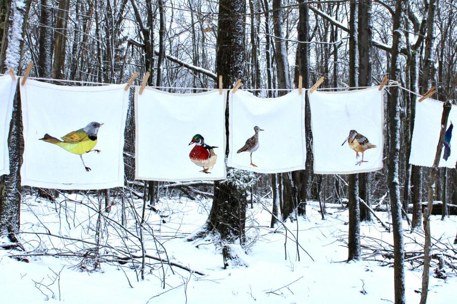 Hand embroidered , endangered birds, thread painting, installation, fiber art , environmental art