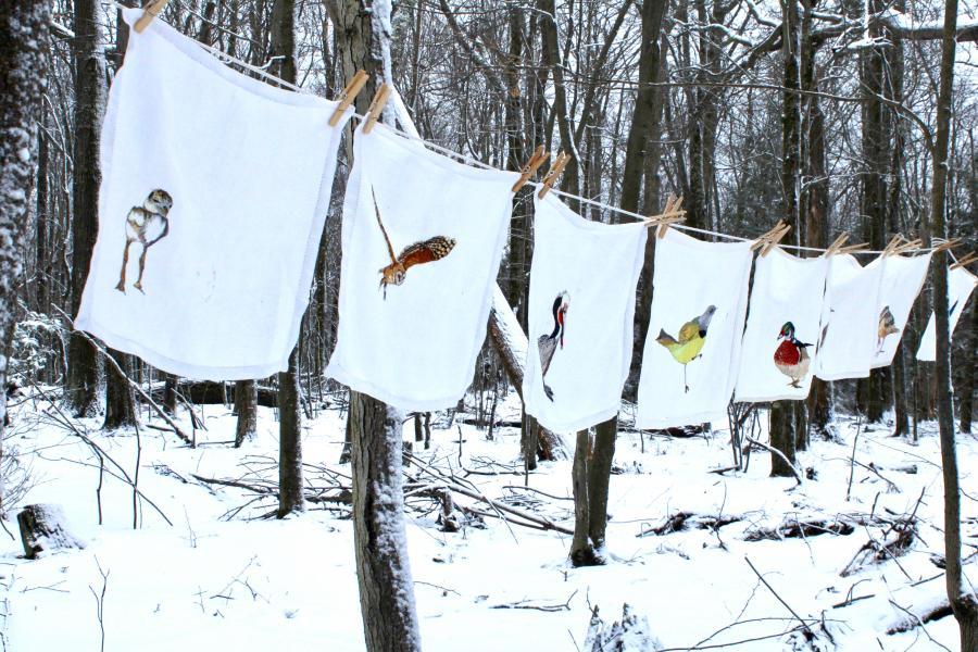 fiber art, hand embroidery, art installation. climate change, birds