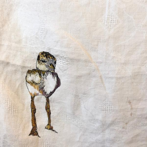 Hand embroidered, thread painting, plover, endangered birds, installation, fiber art