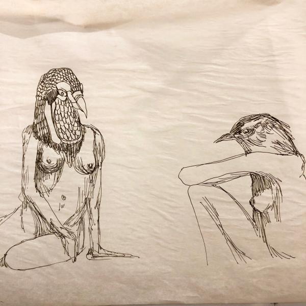 ink illustration, sketch, bird women
