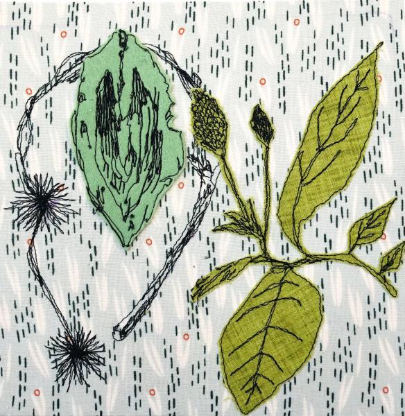 fiberart, thread drawing, plants, nature