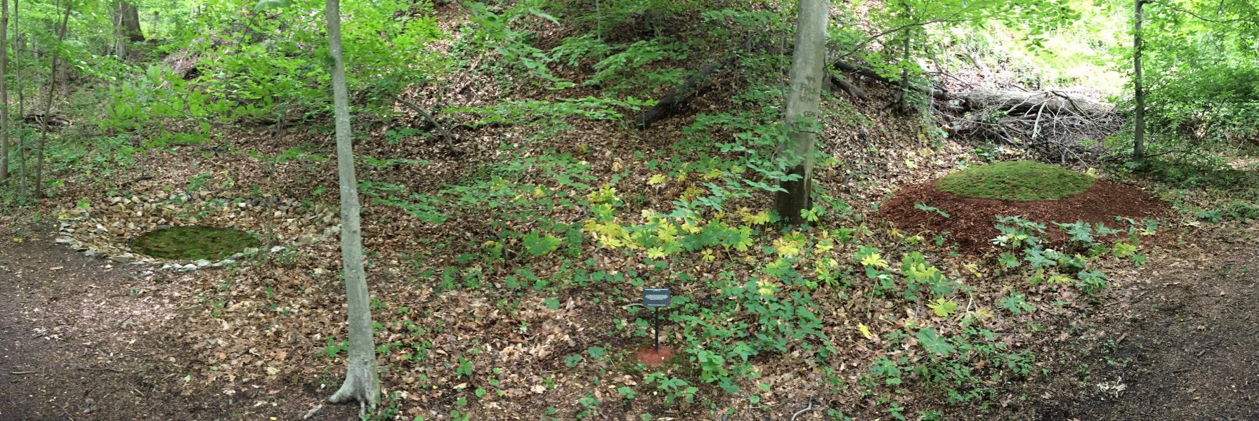 circles, burial mounds