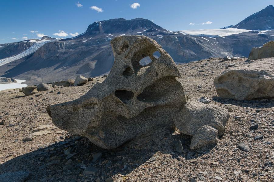 """""""Bird"""" Ventifact, Dry Valleys, Antarctica"""