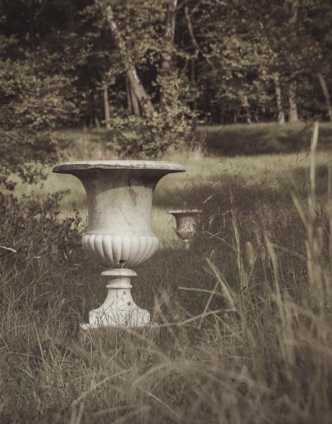 Rose Anderson: Marble Urns in the Slaveholder's Garden