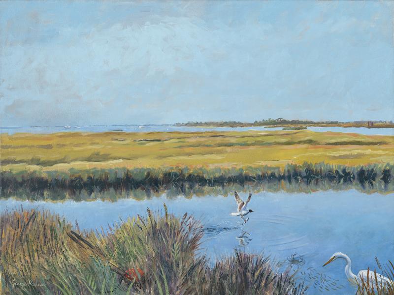 Fenwick Island, marsh scene