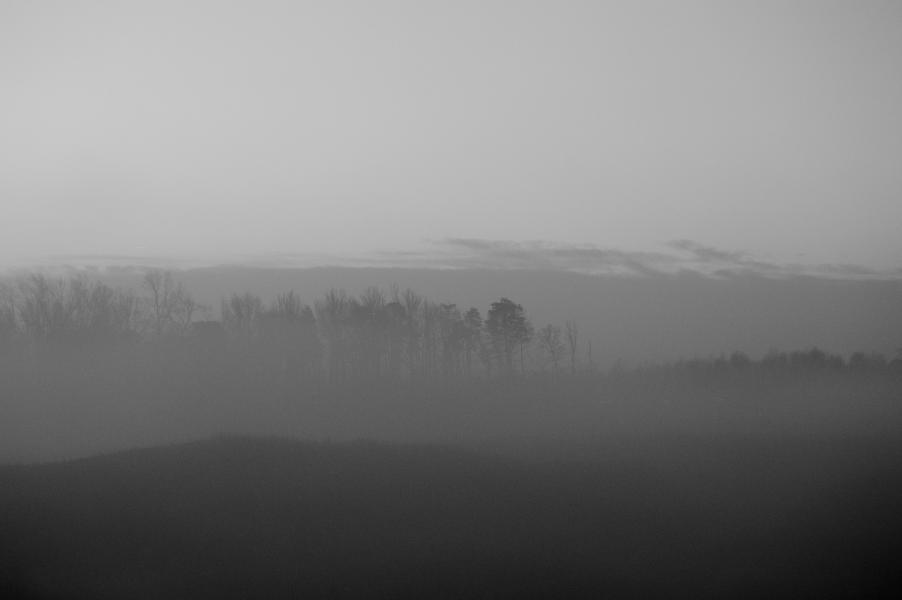 Landscape tonal range studies