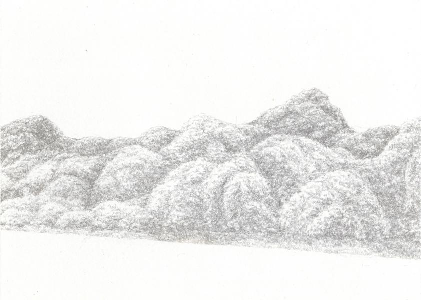silverpoint, drawing