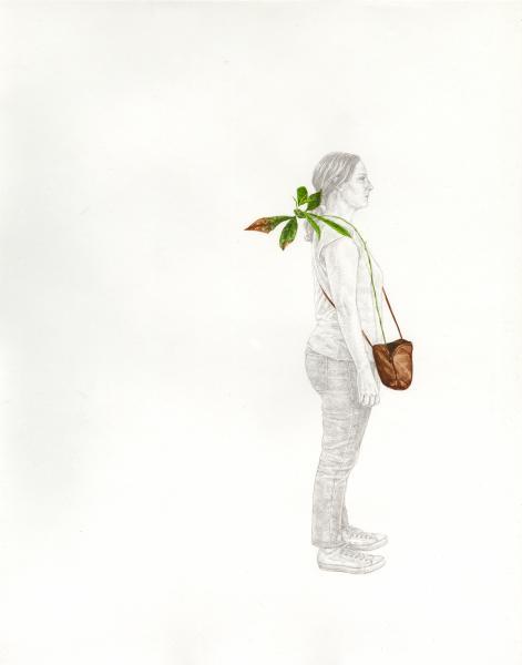 Portable Plant Study #1 (Persea americana)