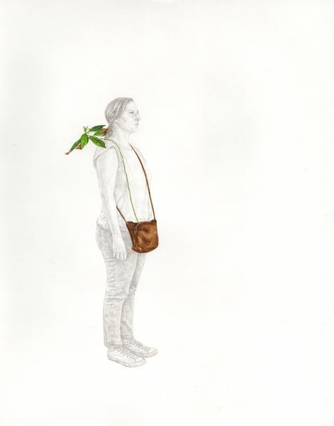 Portable Plant Study #2 (Persea americana)