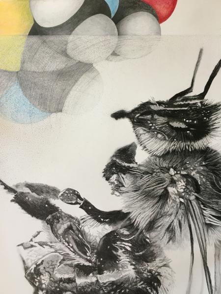 Bee Drawing (In Progress)