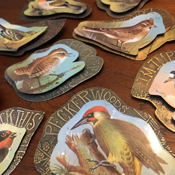 SurlyBird Pins