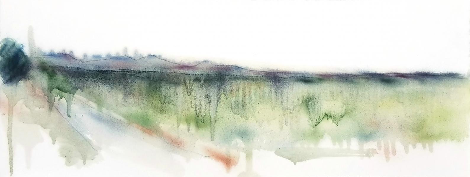 PA Landscape 6