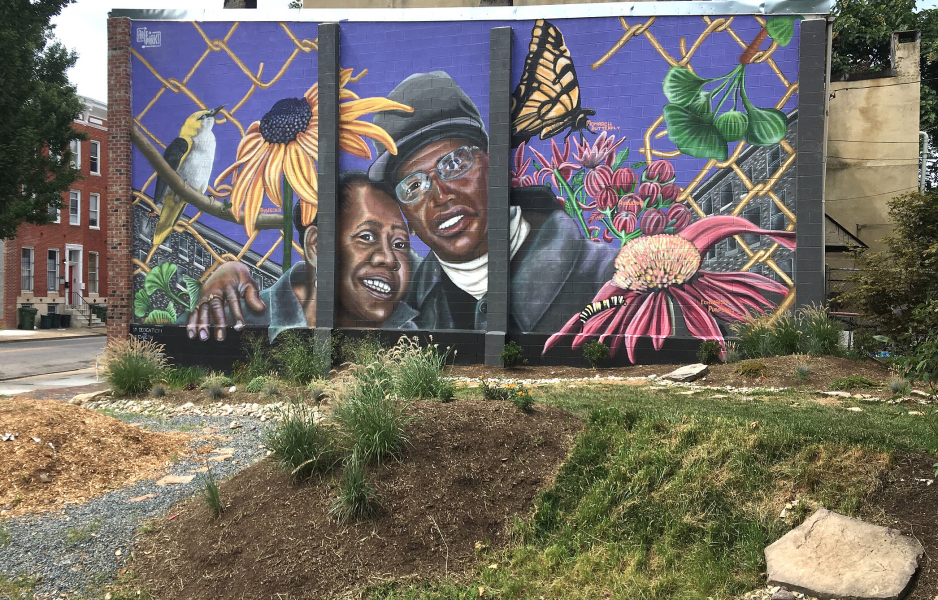 arts and parks nether west baltimore