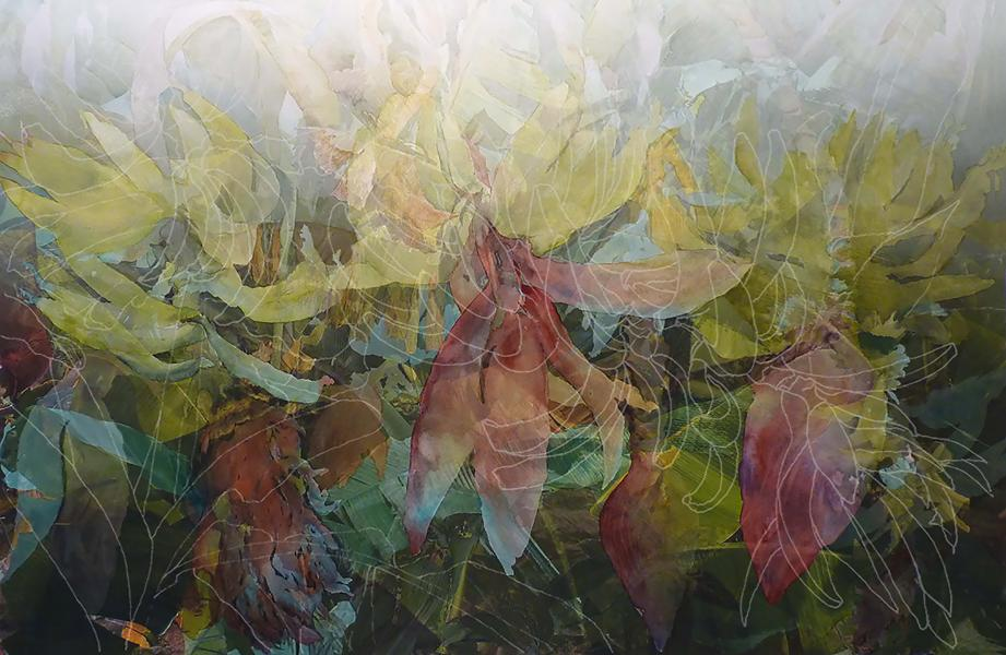 "Disappearing Cavendish, 2017, Watercolor, archival pigment print on paper, framing plexiglass, 31"" x 44"" Cultivated bananas worldwide are in imminent danger of completely disappearing, damaged by fungal diseases. 500 million people, particularly in develo"