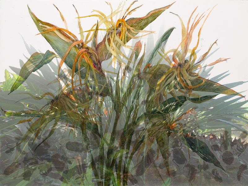 "Other Side of Paradise, 2013, Watercolor, archival pigment print on paper, framing plexiglass, 31"" x 44"","