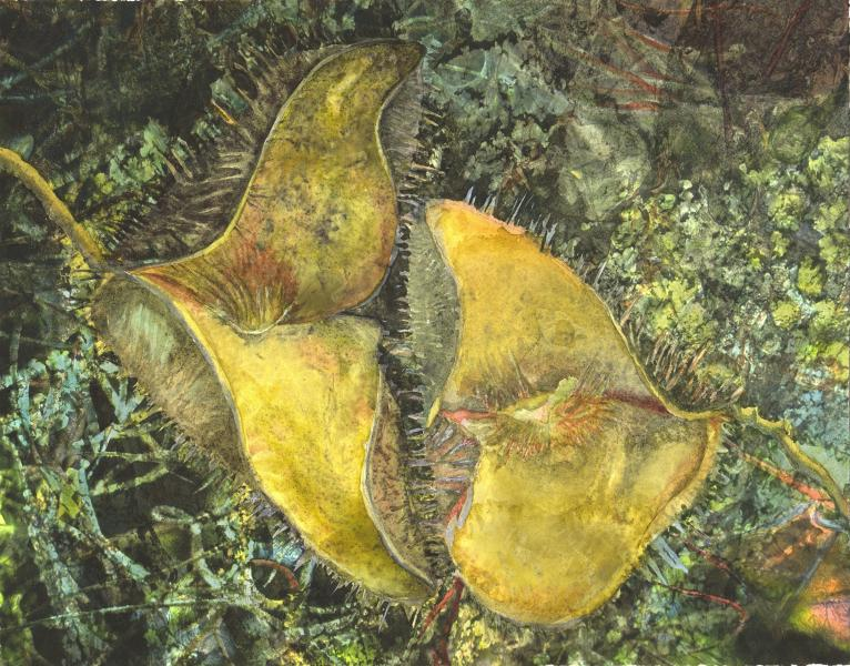 "Pod Invasive, 2015, Watercolor on paper mounted panel, 11"" x 14"""