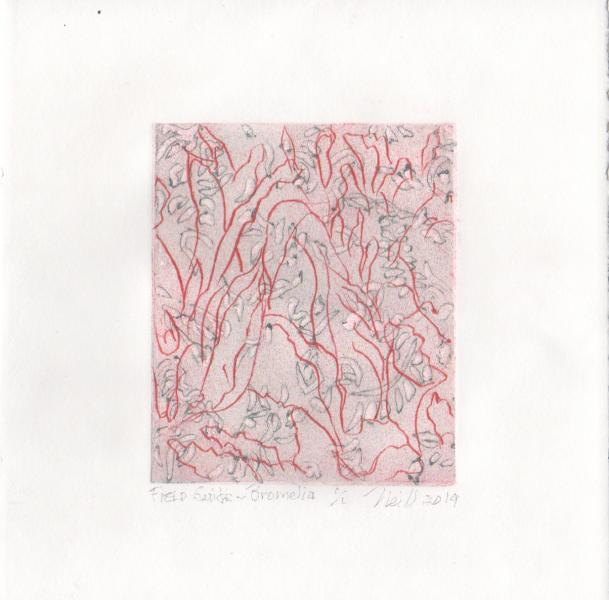 """Field Guild-Bromelia, 1/1, 2019, etching, embossing on paper, 5"""" X 4"""""""
