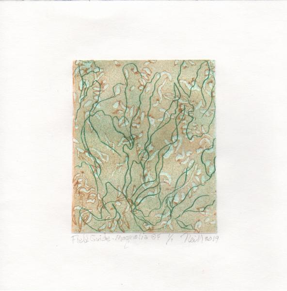 "Field Guide-Magnolia Grandiflora, 1/1, 2019, etching, embossing, 5"" X 4"""
