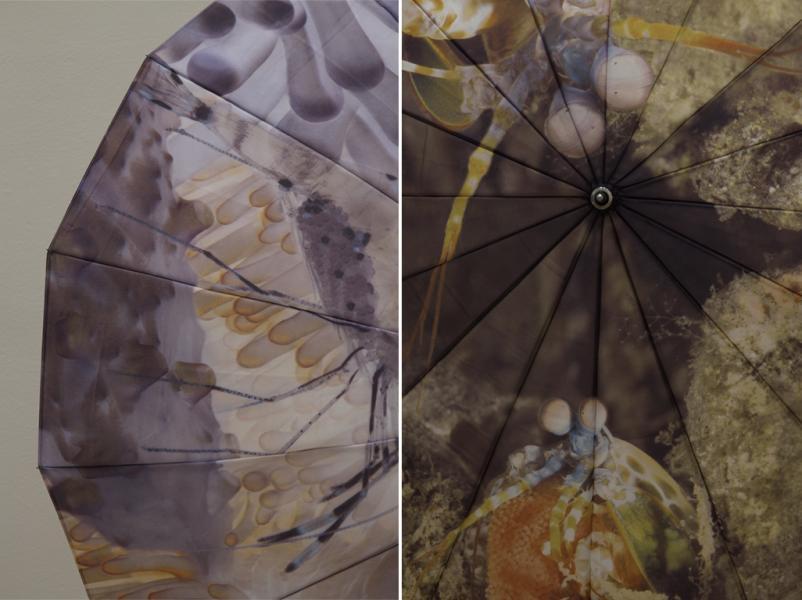 Details of Umbrella pieces