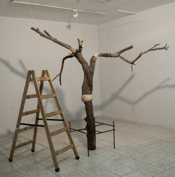 Olive Tree / Marionette