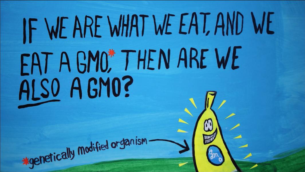 Are we also a GMO?