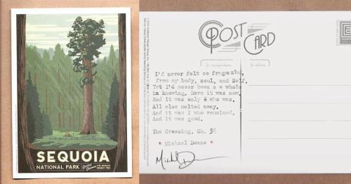 Postcard Series by Michael Doane
