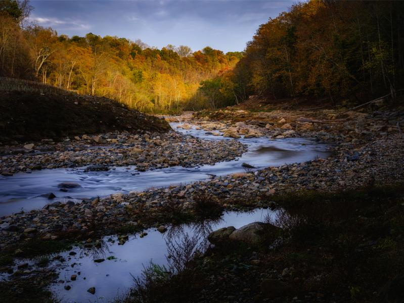 Patapsco Grist Mill Bend in Fall Light
