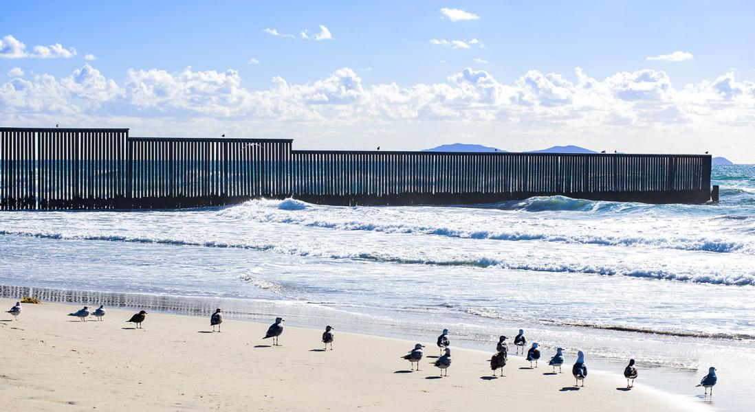 USA-Mexico-border-Pacific-Ocean-seagulls