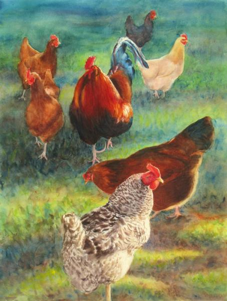 Lucy's Flock, watercolor painting of chickens on grass, by Elizabeth Burin, poultry, rooster and hens