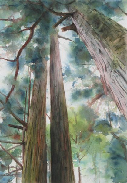 Tall Trees, painting in watercolor and fluid acrylic of tall Japanese cyoress trees, by Elizabeth Burin