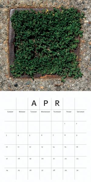 calendar, months, seasons, squares, time
